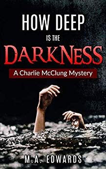 Book Cover: How Deep is the Darkness
